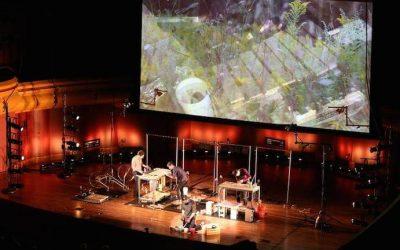 Glenn Kotche's Wild Sound is Unexpectedly Brilliant